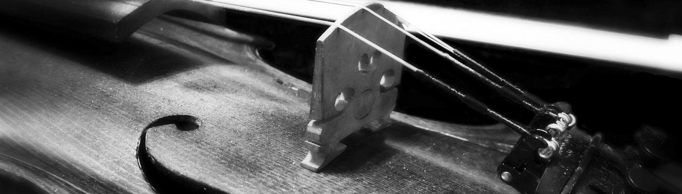 Cours de violon - Ecole de Musique de l'Isle d'Abeau 38