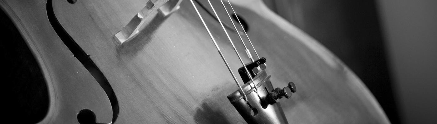 Cours de violoncelle - Ecole de Musique de l'Isle d'Abeau 38